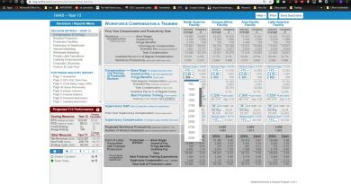 Workforce Compensation & Training- Decision Pages Explained  - The Business Strategy Game 2019
