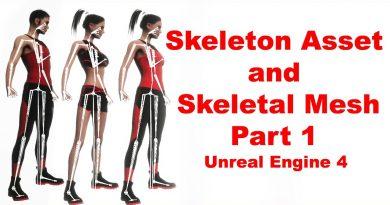 Skeleton Asset and Skeletal Mesh   Unreal Engine 4   Random character