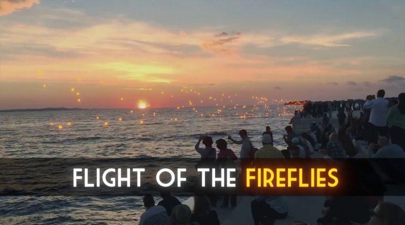 Blender Tutorial: Flight of the fireflies [Eevee and Cycles VFX]